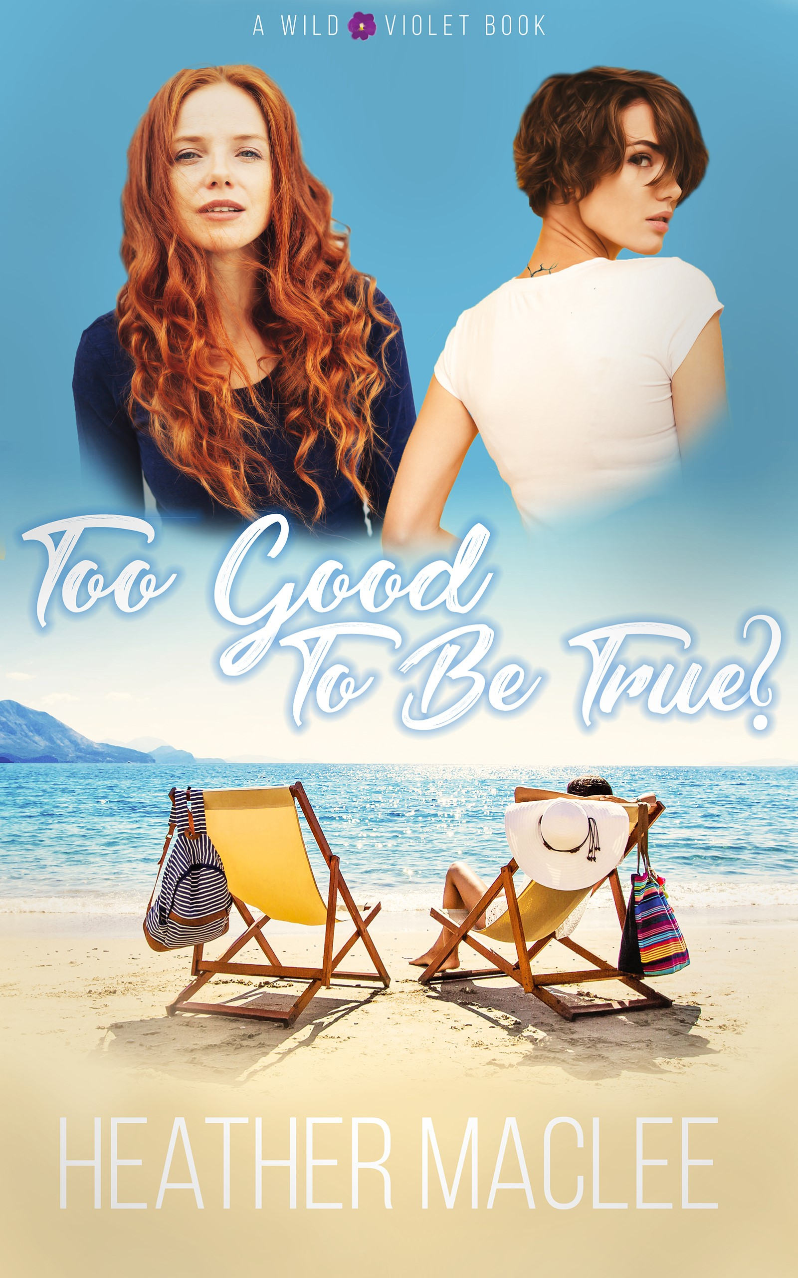 Too Good to be True cover